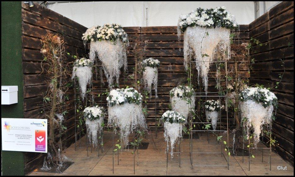 """""""Iceflowers"""" van Scheppers Instituut Wetteren"""